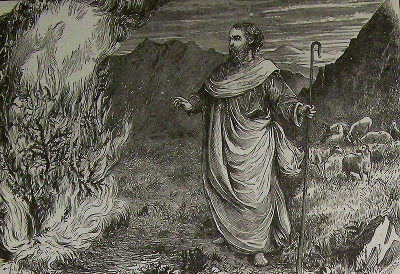 """משה מביט בסנה הבוער. תנ""""ך הולמן, 1890. ויקיפדיה"""