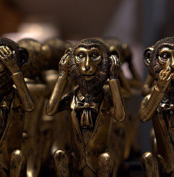 שלושת הקופים: לא שומע, לא רואה, לא מדבר, צילום: Pixabay